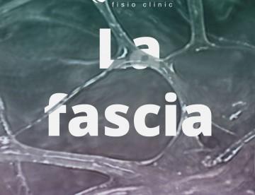 fascia-v